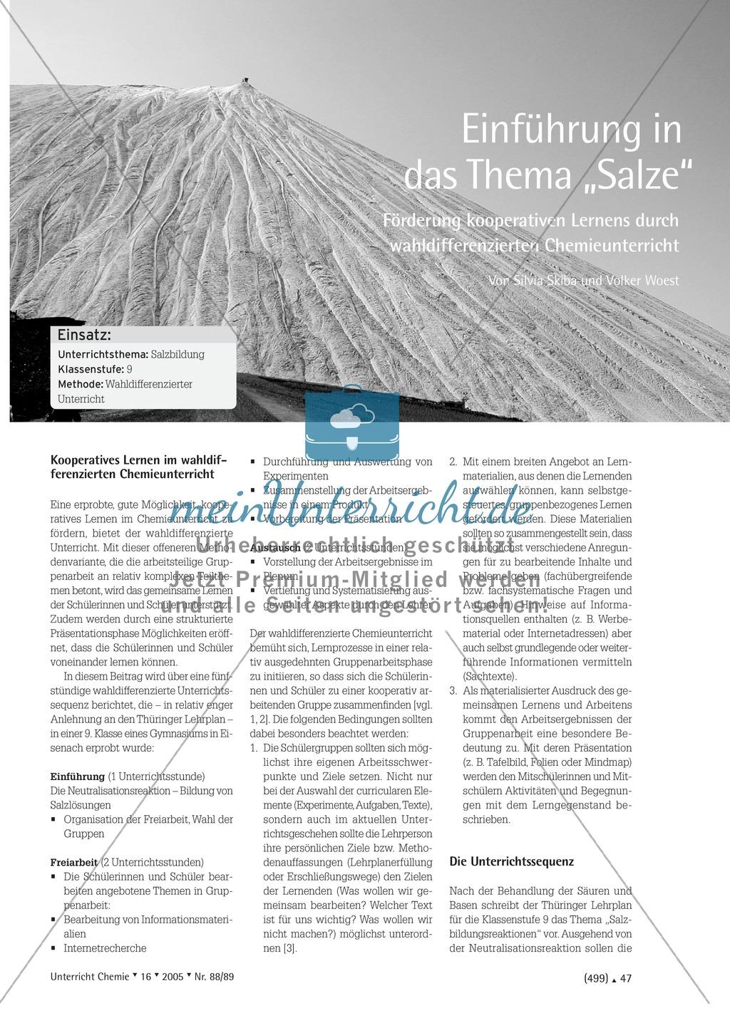 Wahldifferenzierter Chemieunterricht durch Gruppenarbeit: Unterrichtssequenz zum Thema Salze Preview 0