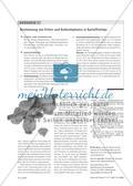 Low Fat oder Low Carbs? - Kooperatives Lernen in einem gesellschaftskritischproblemorientierten Chemieunterricht Preview 5