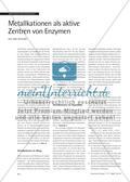 Metallkationen als aktive Zentren von Enzymen Preview 1
