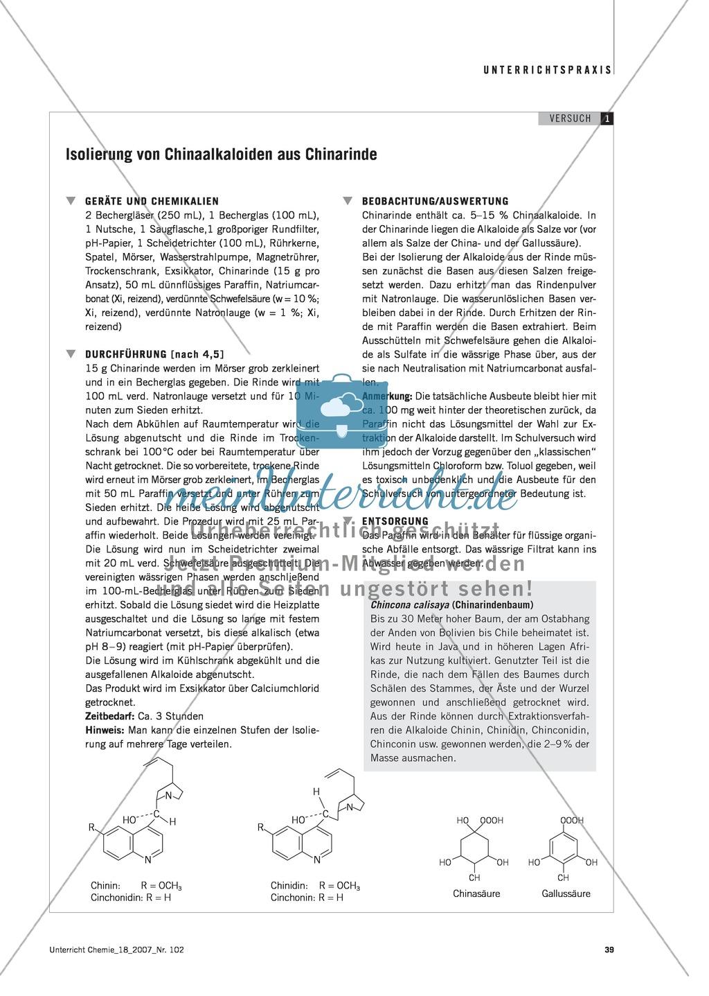 Die Malaria-Erkrankung und die Wirkung von Chinin Preview 3