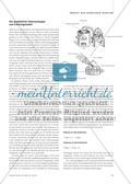 Die chemische Reaktion - Erklärungsperspektiven für die Sekundarstufe I Preview 3