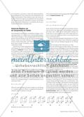 Die chemische Reaktion - Erklärungsperspektiven für die Sekundarstufe I Preview 4