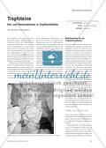 Tropfsteine - Hin- und Rückreaktionen in Tropfsteinhöhlen Preview 1