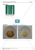 Versuch mit Körnern als Erweiterung des Kugelteilchenmodells Preview 2