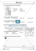David: Fragebogen zum Wissensstand der Schüler Preview 3