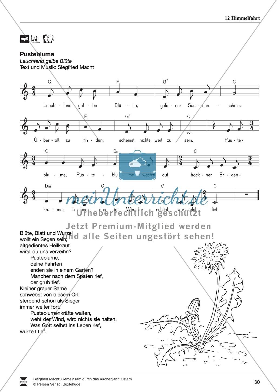 Himmelfahrt - Textmeditation, Lieder, Löwenzahnpredigt Preview 3