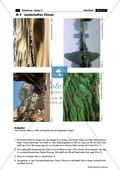 China: Aufgaben zur Topografie und Länderkunde Thumbnail 4