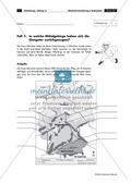 Lernzirkel zur räumlichen Orientierung in Deutschland: Bundesländer + Nachbarländer + Flüsse + Gebirge und Landschaften + Hauptstädte + Autokennzeichen + Wappen Preview 4