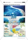 Wunder der Erde: Das Great-Barrier-Riff Preview 3