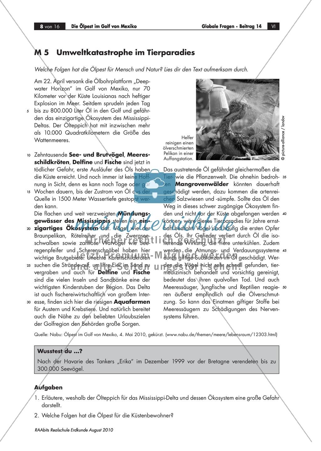 Umweltkatastrophe Ölpest - Folgen für Tiere und Ökosystem Preview 0