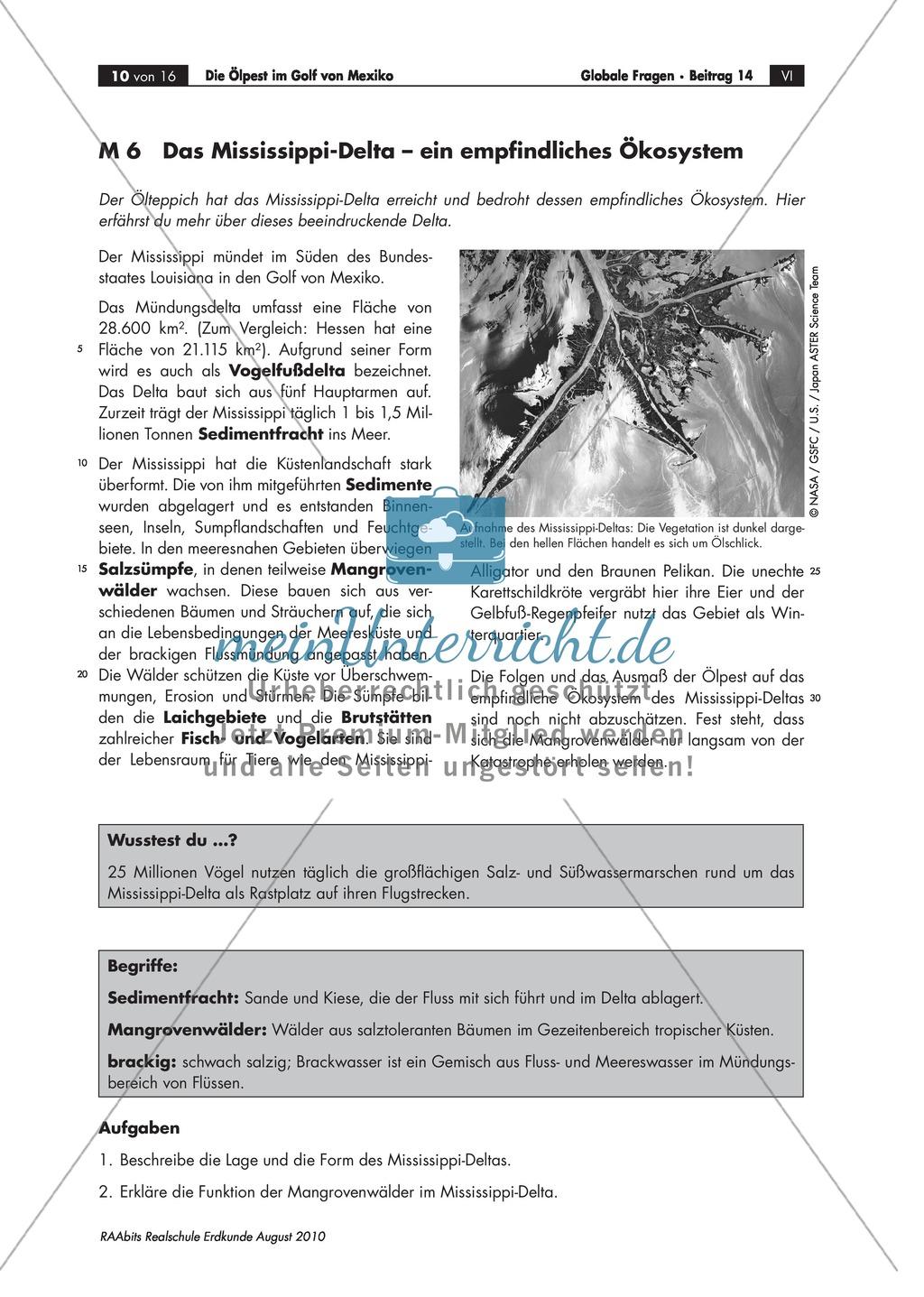 Umweltkatastrophe Ölpest - Folgen für Tiere und Ökosystem Preview 2