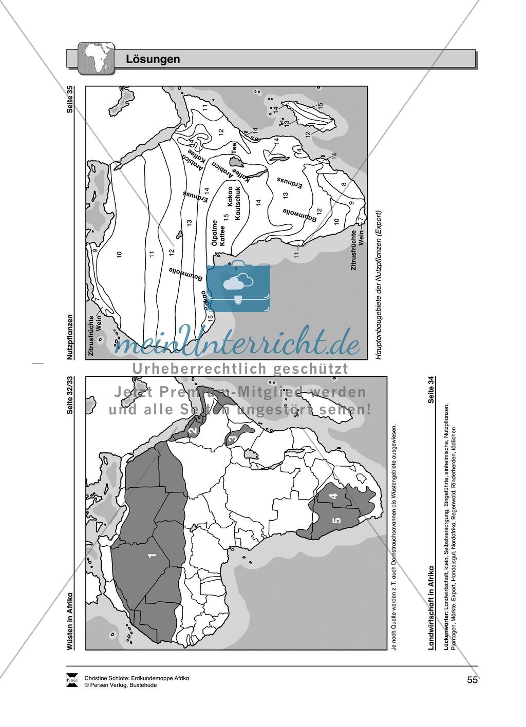 Kopiervorlage zum Klima des Kontinents Afrika: Lückentexte + Klimadiagramme + Karten Preview 17