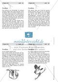 Rechtschreibung: Das t-Signal - Wissenschaftliche Grundlagen und Arbeitsmaterialien Preview 10