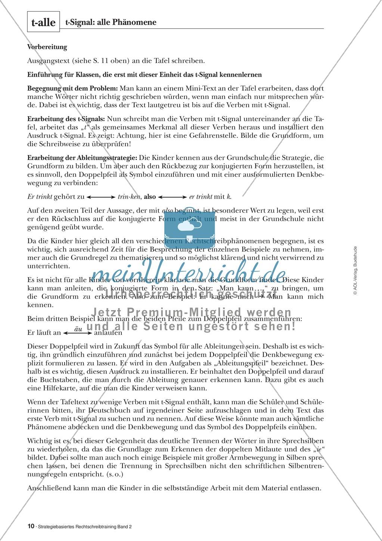 Rechtschreibung: Das t-Signal - Wissenschaftliche Grundlagen und Arbeitsmaterialien Preview 1