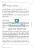 Rechtschreibung: Das t-Signal - Wissenschaftliche Grundlagen und Arbeitsmaterialien Preview 2