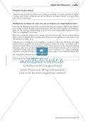 Rechtschreibung: Das t-Signal - Wissenschaftliche Grundlagen und Arbeitsmaterialien Preview 3