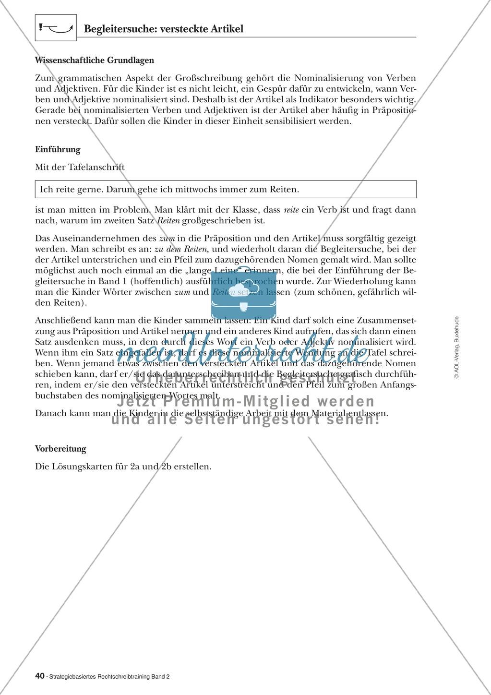 Rechtschreibung: Begleitersuche - Versteckte Artikel - Wissenschaftliche Grundlagen und Arbeitsmaterialien Preview 1