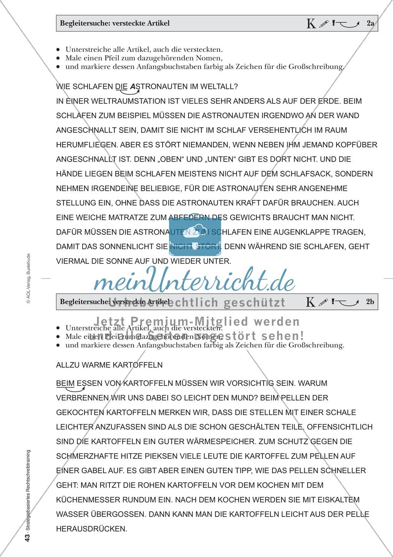 Rechtschreibung: Begleitersuche - Versteckte Artikel - Wissenschaftliche Grundlagen und Arbeitsmaterialien Preview 4