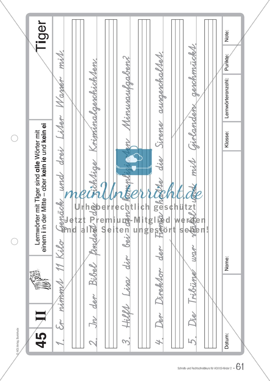 Zusatzaufgaben zur Rechtschreibübung mit Textübungsbögen für Kinder mit ADS/ADHS Preview 47