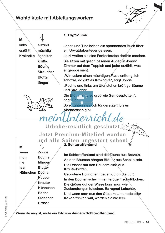Übungen für Kinder mit LRS: Blitzableiter-Strategie zur richtigen Rechtschreibung von ä und äu Preview 13