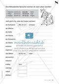 Übungen für Kinder mit LRS: Blitzableiter-Strategie zur richtigen Rechtschreibung von ä und äu Preview 7