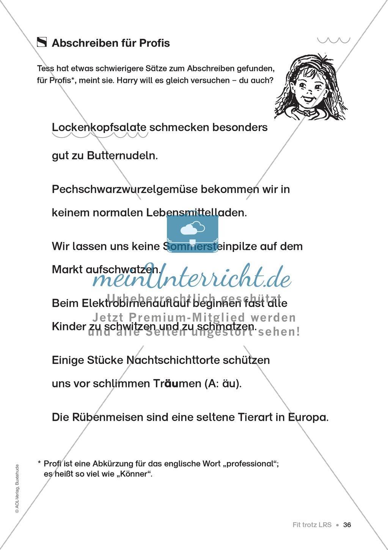 Übungen für Kinder mit LRS: Strategien für Rechtschreibübungen - Silbenschwingen, Verlängerungswörter, Merkwörter und Ableiten Preview 28