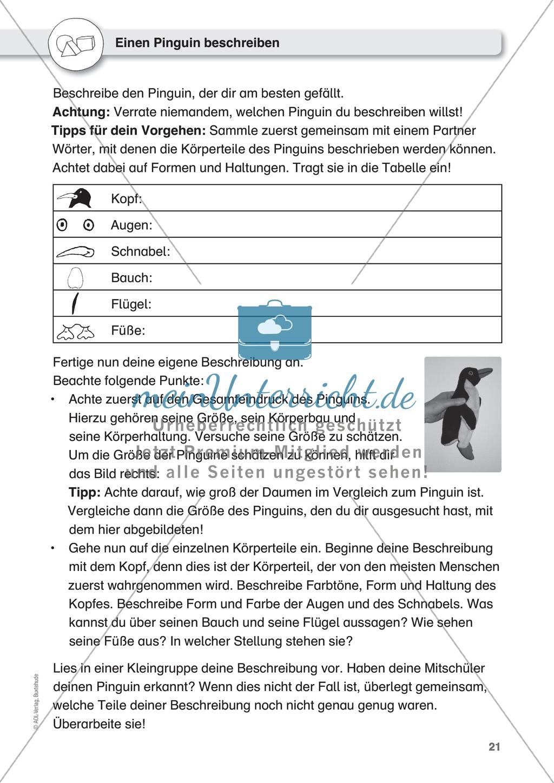 Gegenstände beschreiben - Türen-Domino, Beschreiben üben an Pinguinen, Puppen Preview 5