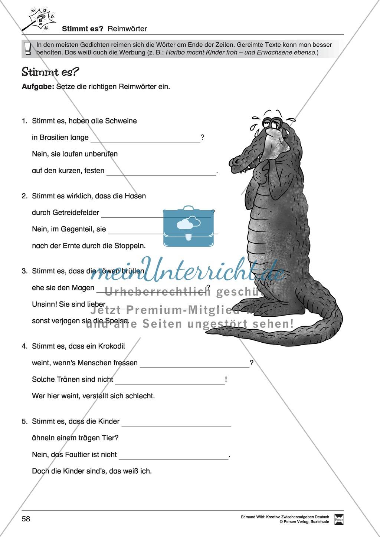 Kreative und spielerische Aufgaben zu Rechtschreibung, Wortschaft, Grammtik und Konzentration Preview 8