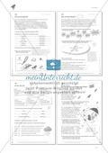 Lesekompetenz aufbauen: Falsche Wörter finden Thumbnail 7