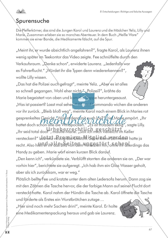 Lesekompetenz aufbauen - richtige Aussagen erkennen: Till Eulenspiegel Preview 10