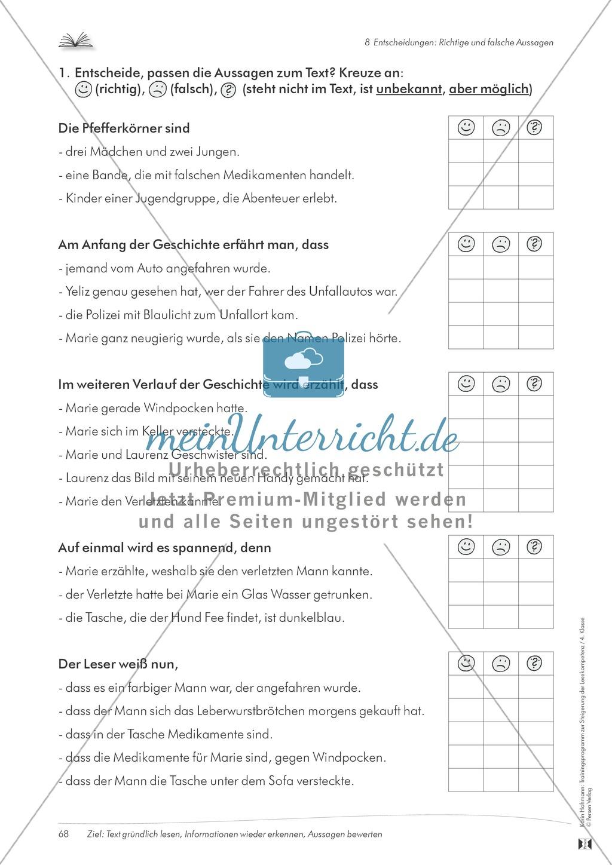 Lesekompetenz aufbauen - richtige Aussagen erkennen: Till Eulenspiegel Preview 11