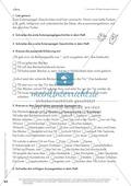 Lesekompetenz aufbauen - richtige Aussagen erkennen: Till Eulenspiegel Preview 6