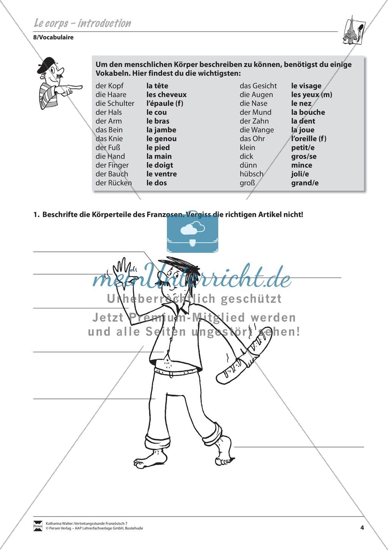 Grammatik für Anfänger: Le corps- der Körper Preview 0