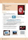 Bilderrahmen:  Ein Passepartout gestalten Preview 2