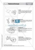 Gestalten mit Papier: Frühblüher im Zwergenland Preview 3