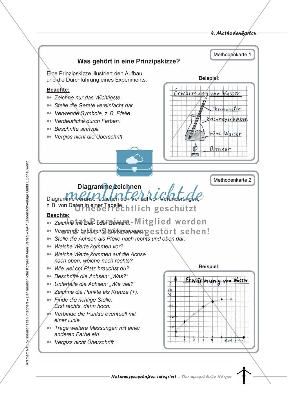 Methodenkarten: Prinzipskizze, Diagramme, Tabellen ...