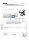 Stationenlernen in der 9. Klasse: Mediation and translation Preview 3