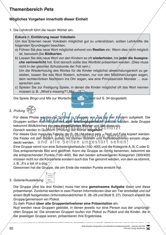 Kooperatives Lernen: Themenbereich Pets + Kopiervorlagen Preview 9