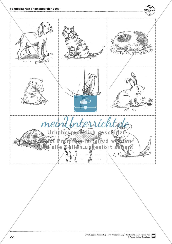 Kooperatives Lernen: Themenbereich Pets + Kopiervorlagen Preview 11