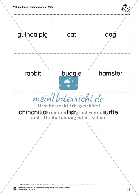 Kooperatives Lernen: Themenbereich Pets + Kopiervorlagen Preview 12