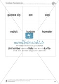 Kooperatives Lernen: Themenbereich Pets + Kopiervorlagen Thumbnail 12