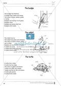 Kooperatives Lernen: Themenbereich Pets + Kopiervorlagen Thumbnail 17