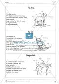 Kooperatives Lernen: Themenbereich Pets + Kopiervorlagen Thumbnail 18