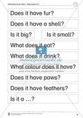 Kooperatives Lernen: Themenbereich Pets + Kopiervorlagen Thumbnail 22
