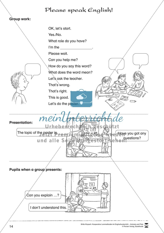Kooperatives Lernen: Themenbereich Pets + Kopiervorlagen Preview 3