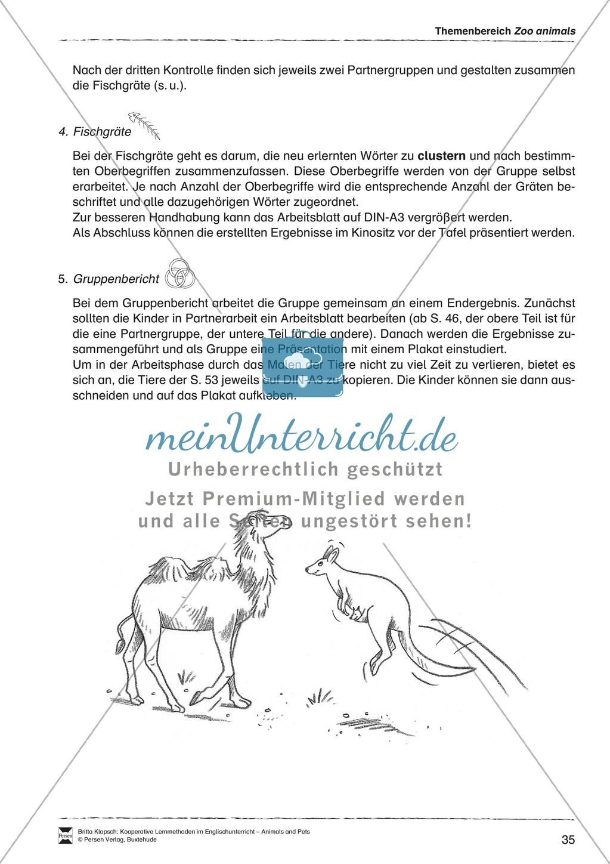 Kooperatives Lernen: Themenbereich Zoo Animals + Kopiervorlagen Preview 10