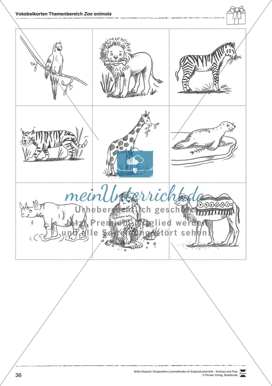 Kooperatives Lernen: Themenbereich Zoo Animals + Kopiervorlagen Preview 11