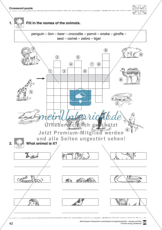 Kooperatives Lernen: Themenbereich Zoo Animals + Kopiervorlagen Preview 17