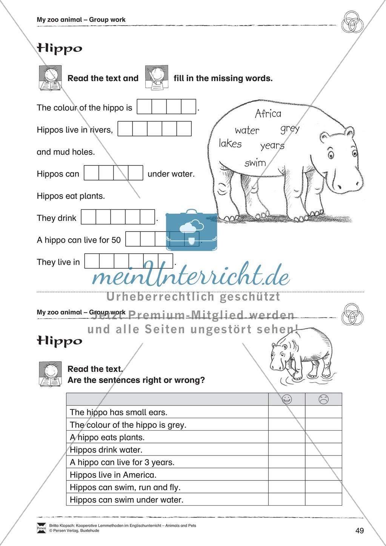 Kooperatives Lernen: Themenbereich Zoo Animals + Kopiervorlagen Preview 24