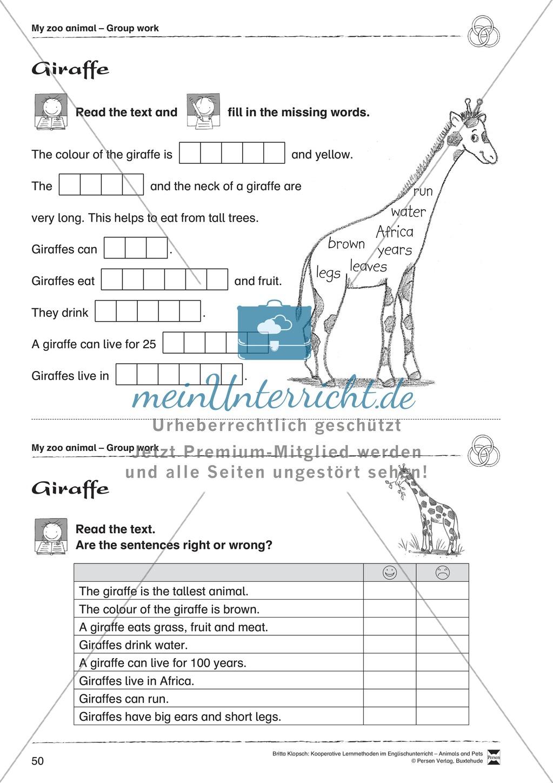 Kooperatives Lernen: Themenbereich Zoo Animals + Kopiervorlagen Preview 25